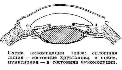 Иркутскэнерго котировки